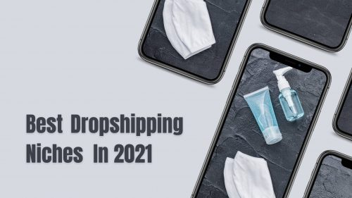 5 Best Dropshipping Niches In 2021 To Look Out For